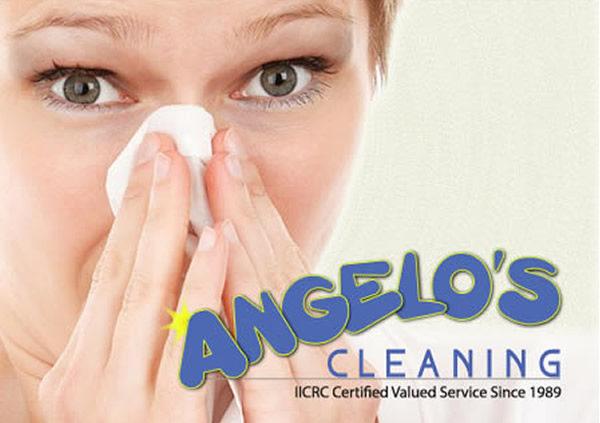 Angelo's Carpet Cleaning